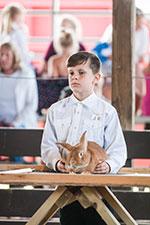 1811_rabbit_show